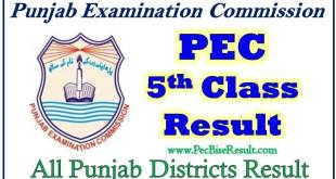 Online Download 5th Class Result 2017