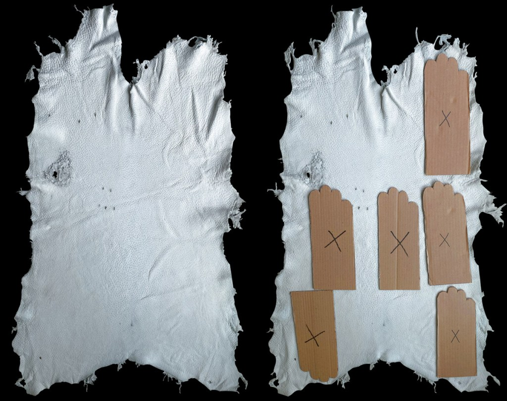 grade i - peccary skins and hands
