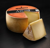 2015-Word-Cheese-Alfred