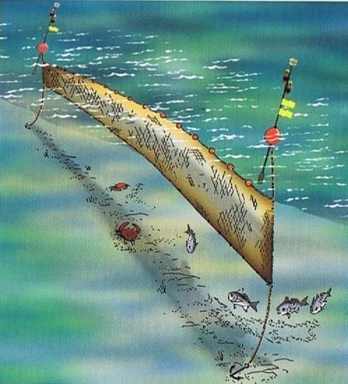 filet maillant pechant entre deux eaux