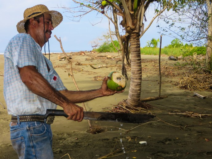 Angel showing us how to open a coconut.