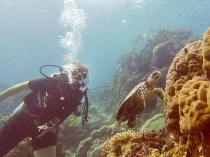 Karen posing with her favourite underwater creature, the Hawksbill Turtle.