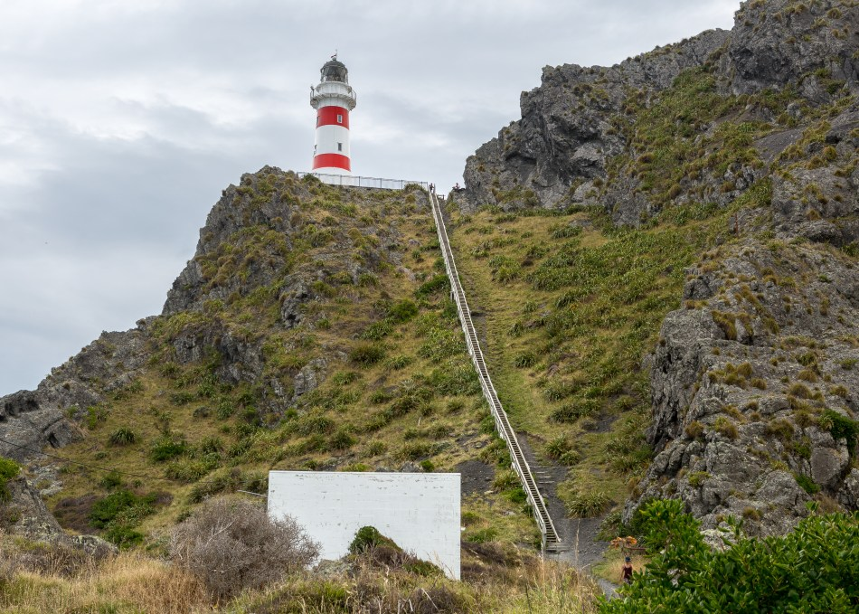 Cape Palliser access stairs