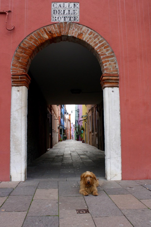 Venice and Verona