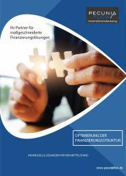 Pecunia Flow Unternehmensberatung Dennis Kahl Münster Produktflyer Optimierung der Finanzierungsstruktur