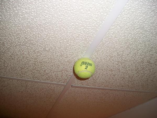 tennis ball experiencing no acceleration