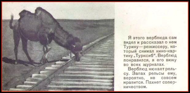 Шкловский_Турксиб_1930.2bmp.tiff