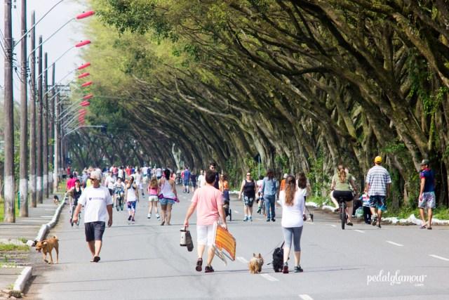 Rua de Lazer aberta a vida aos domingos em Joinville