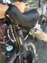 Bike road rash