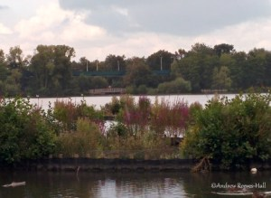 The Great Wall of Fleet - aka the car parking deck - is visible from Fleet Pond.