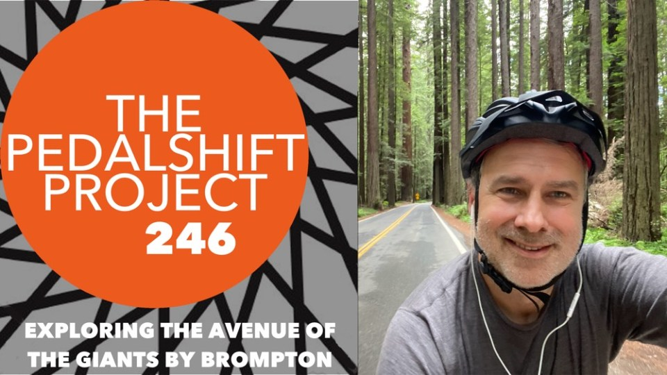 The Pedalshift Project 246: Exploring the Avenue of the Giants by Brompton