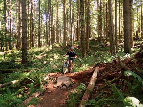 Catamount Trail fun.
