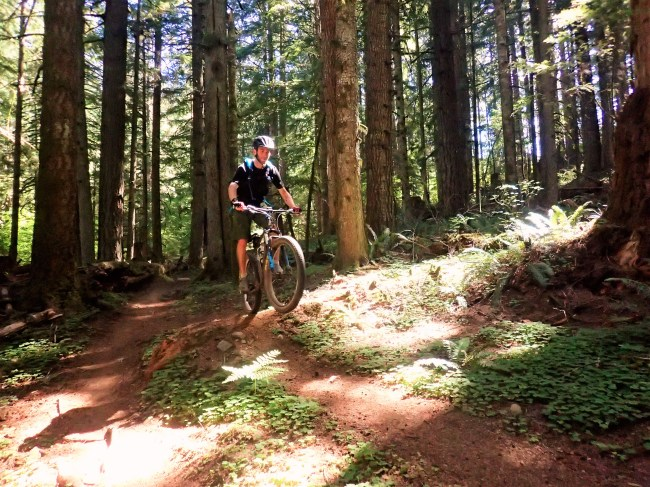 One of the many jumps along the Catamount Trail.