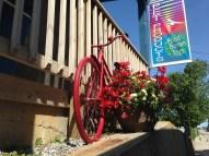 bikes in Brechin