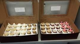 cupcake_set