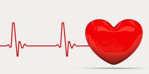 fréquence cardiaque battement coeur