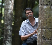 MANAUS - AMAZONAS - FOTOS DE ARQUIVO DO PESQUISADOR PHILIP FEARNSIDE NAS MATAS DO INSTITUTO NACIONAL DE PESQUISAS DA AMAZïNIA- INPA. FOTO: CƒLIO JR