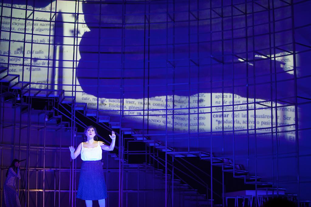 Maria-Moliner-Pedro-CHamizo-Opera-110