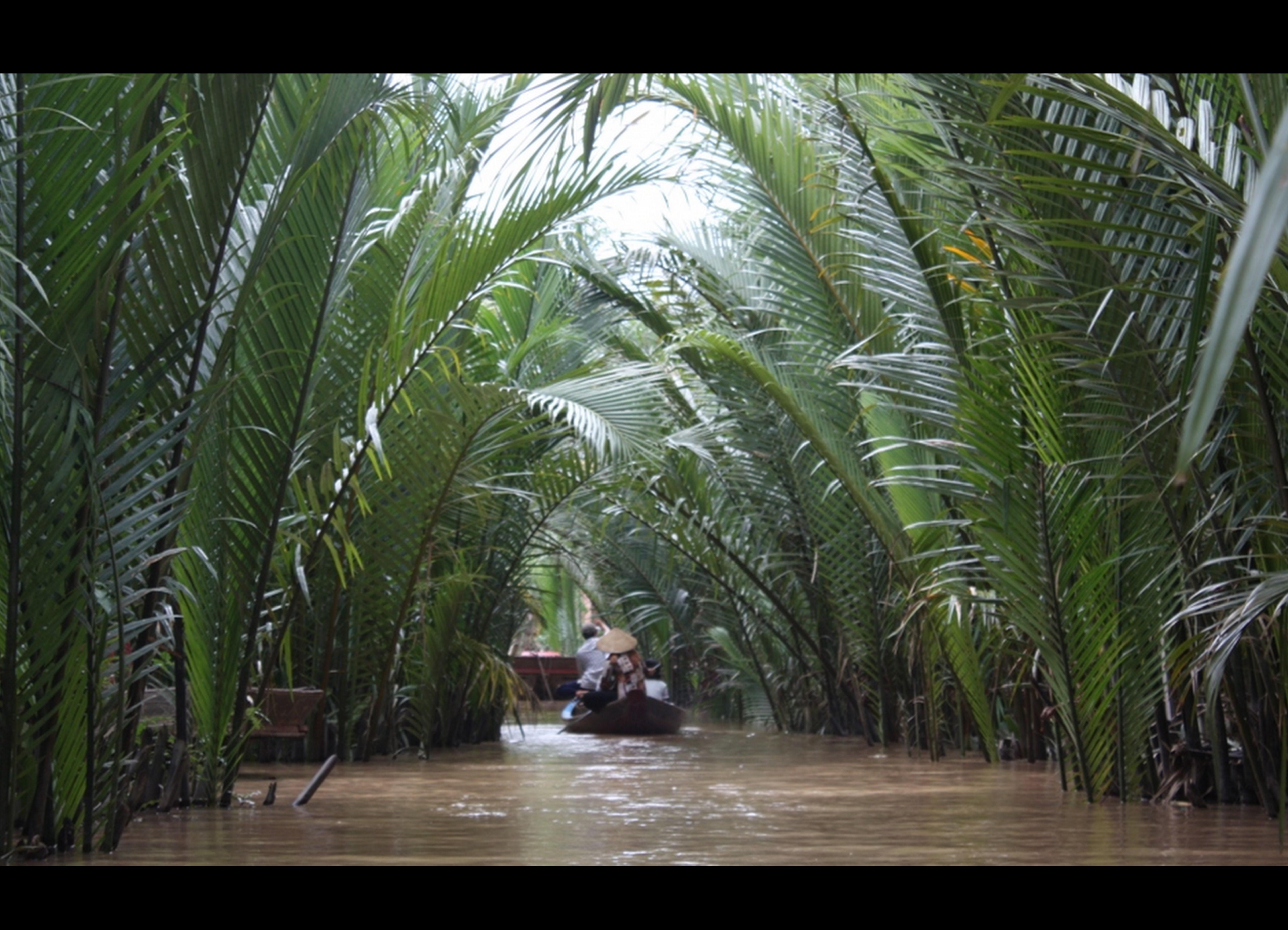 Cambodia, Vietname_Julho 2009