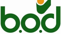 Nueva plataforma web del BOD caló positivamente en los usuarios - Nueva plataforma web del BOD caló positivamente en los usuarios