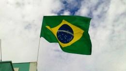 La debacle en Brasil por la estrepitosa caída de su PIB - La debacle en Brasil por la estrepitosa caída de su PIB