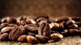 """Proyecto Kafé Karive impulsará producción de café en Altos Mirandinos - Proyecto """"Kafé-Karive"""" impulsará producción de café en Altos Mirandinos"""