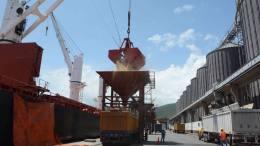 31 mil toneladas de trigo ruso arribaron al país - 31 mil toneladas de trigo ruso arribaron al país