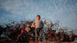 La petición de Israel para oxigenar la Franja de Gaza - La petición de Israel para oxigenar la Franja de Gaza
