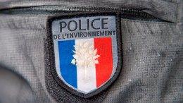 Por esta razón Francia investiga de cerca a Epson - Por esta razón Francia investiga de cerca a Epson