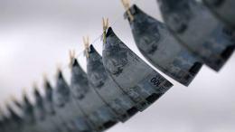 Casi 670 casos de lavado de dinero con criptomonedas detectó Japón - Casi 670 casos de lavado de dinero con criptomonedas detectó Japón