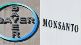 Bruselas aprueba la compra de Monsanto por parte de Bayer - Bruselas aprueba la compra de Monsanto por parte de Bayer