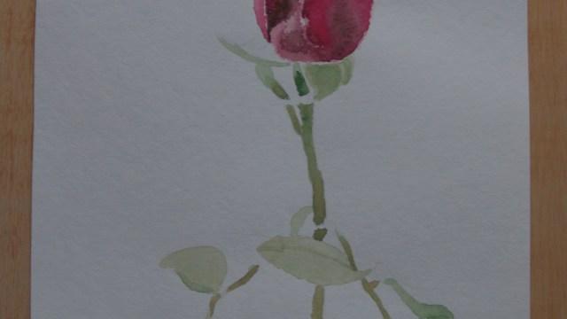 """Rosas VIII"""