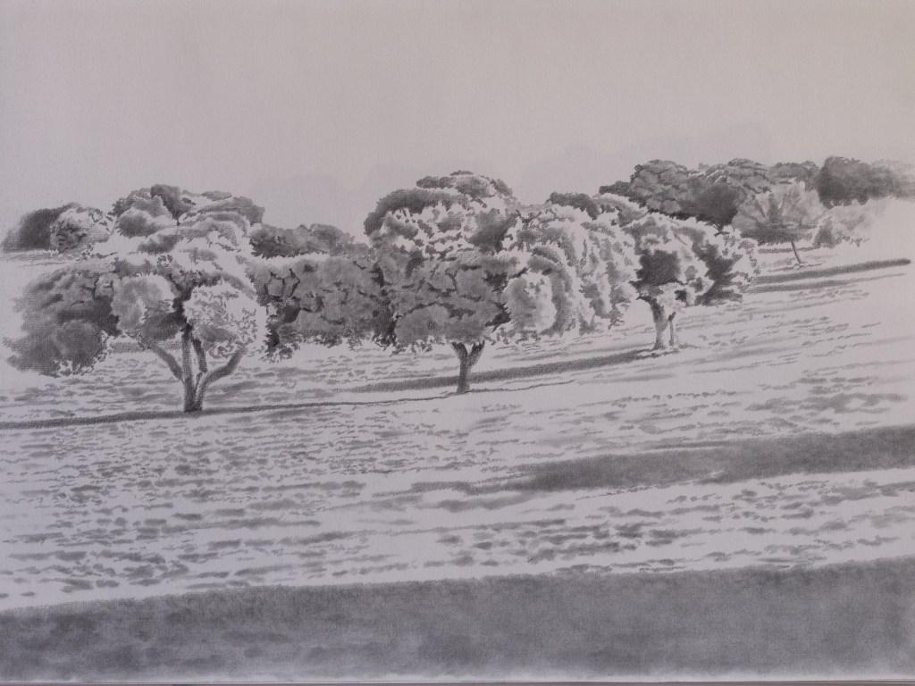 Imagen 1950