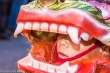 Año del Gallo. desfile de celebracion del año nuevo chino por las calles del barrio de Usera en Madrid