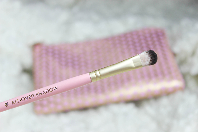 Absolute Essentials- Set de pinceaux TOO FACED-26