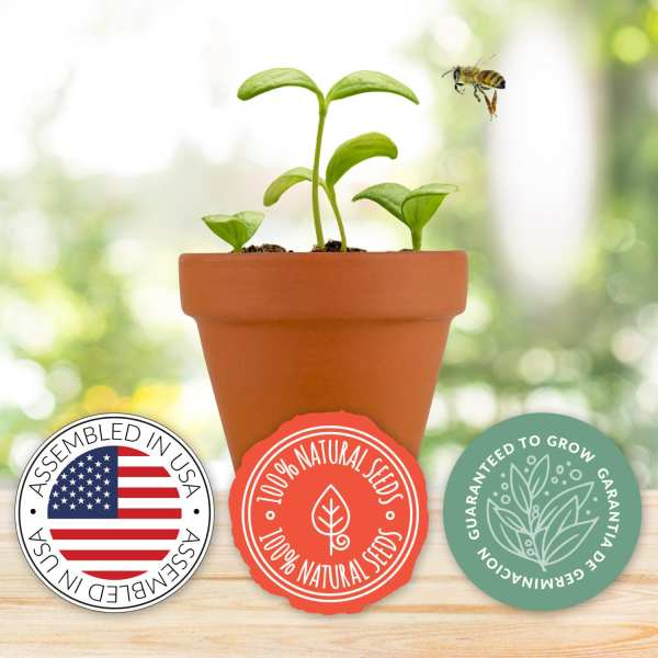 Classic Terracotta Grow Kit – Save the Bees Series 1