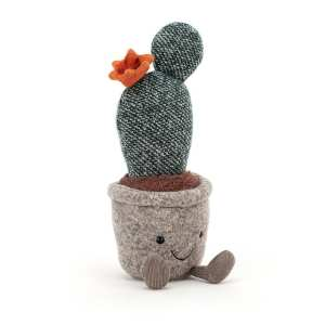 Silly Prickly Pear Succulent
