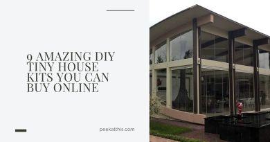 Top 10 Tiny House Kits On Amazon