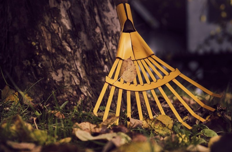 Fall Home Maintenance Projects - 3 Important Areas To Focus On 1