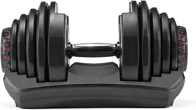 Bowflex SelectTech 1090 adjustable dumbbells