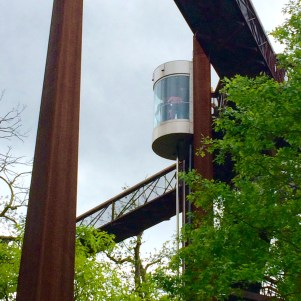 Lift to the Treetop Walkway