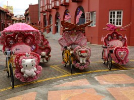 Rickshaws pimped for Chinese Tourists