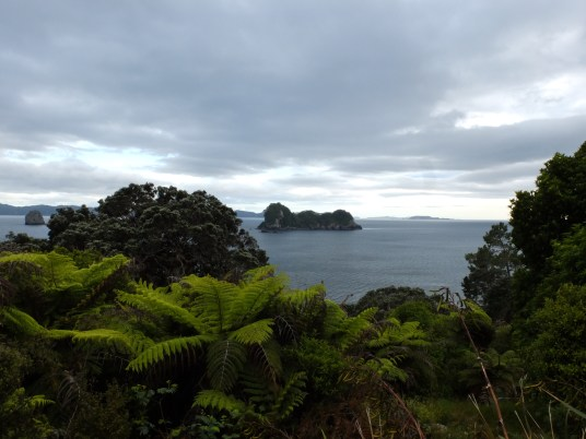 Coromandel - northern island