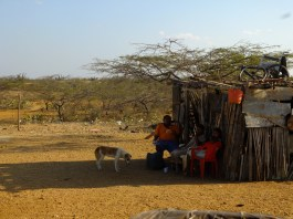 People live with almost nothing here. The only revenus come from fishing, goat trade and artesania.
