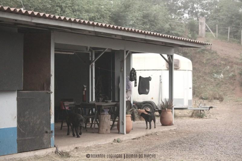 Quinta do Riacho | Photographer : Roxanne Legendre
