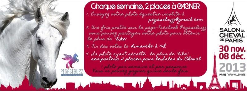 Gagnez vos places pour le Salon du Cheval 2013