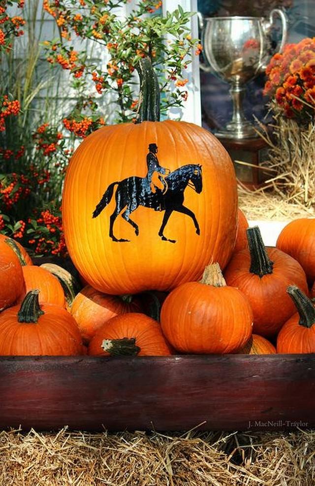 www.pegasebuzz.com   Equestrian pumpkin - citrouille équestre
