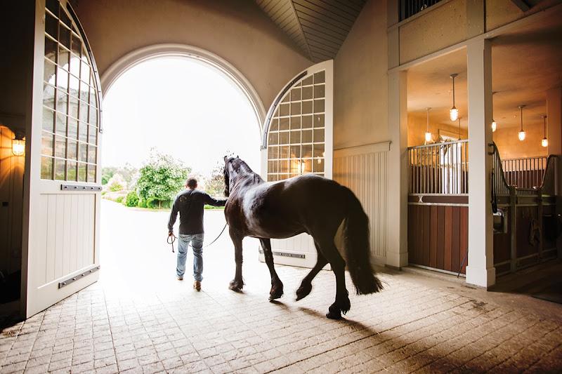 martha-stewart-stables-01