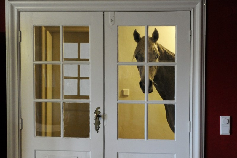 www.pegasebuzz.com   Nasar, the horse who lives inside a house