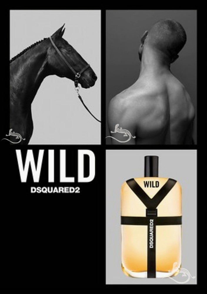 www.pegasebuzz.com | Silvester Ruck by Steven Klein for Dsquared² Wild Men Fragrance